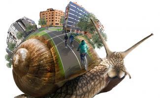 Ilustración caracol city