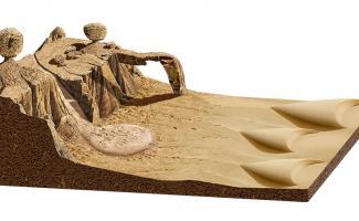 Ilustración desierto
