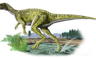 Ilustración dinosaurio