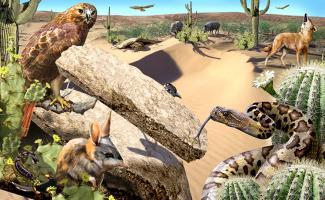 Ilustración ecosistema desierto